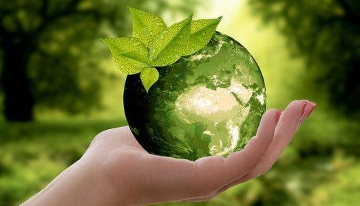 Gospodarka o obiegu zamkniętym – circular economy